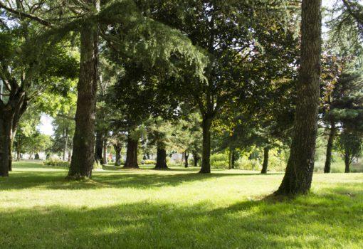 parc-verdun